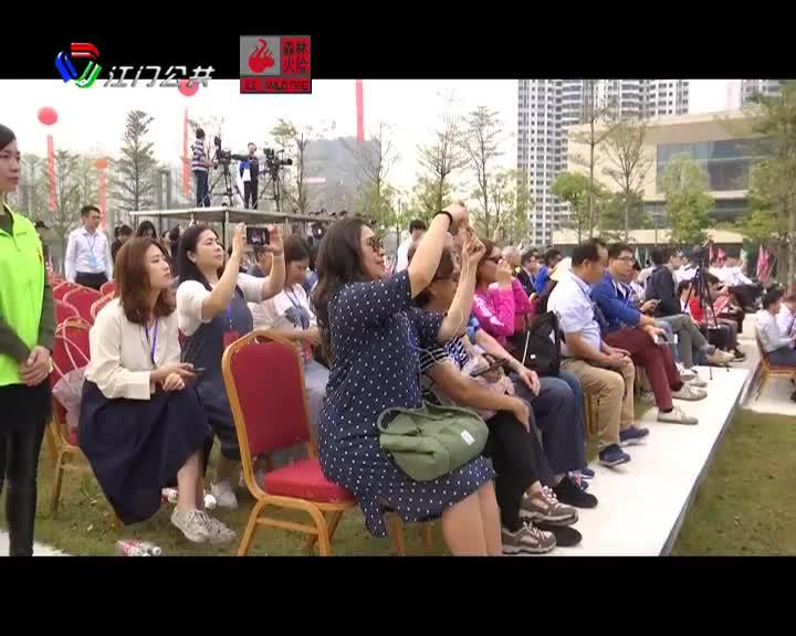 鹤山万名中小学生进行咏春拳段位考评和汇演