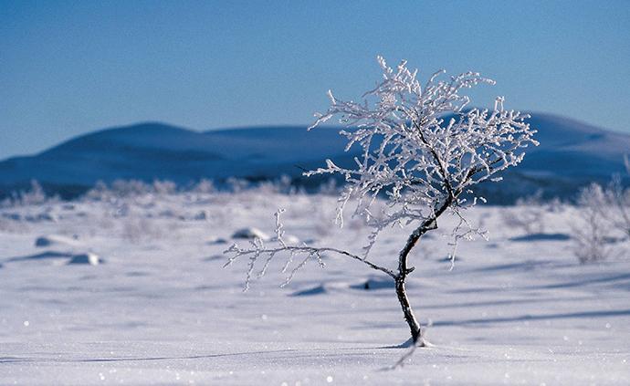 周末北方雨雪增多,南方异常温暖或创纪录