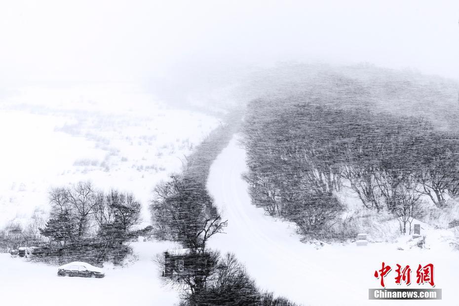 興凱湖冬日現黑白世界