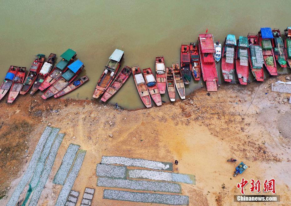 航拍江西鄱陽湖畔漁民曬魚忙 成湖區獨特風景線