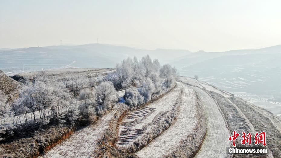 甘肅黃土高原現霧凇景觀 銀花綻放美如畫