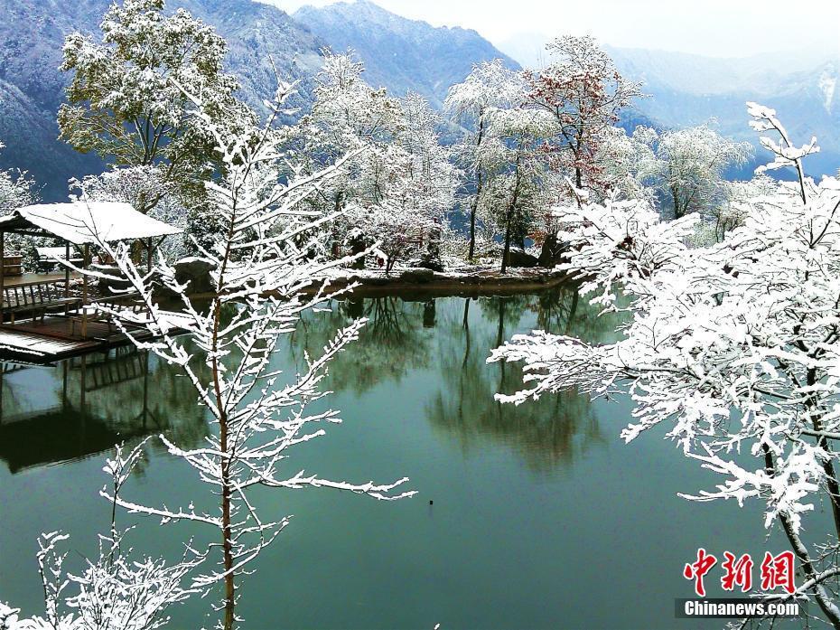 四川什邡山區迎來今冬首場雪 冬日美景宛如童話世界