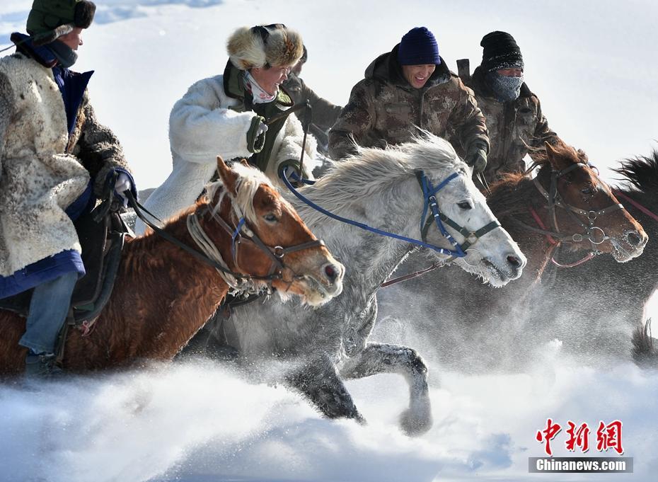 新疆昭蘇馬群雪地馳騁氣勢如虹