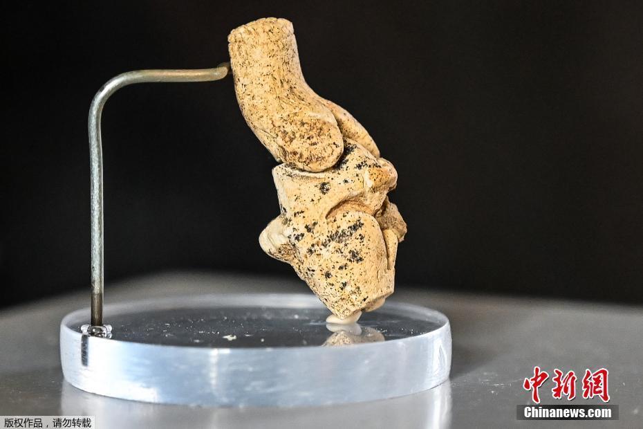 """法國亞眠發現4厘米高""""維納斯""""小雕像 保存完好"""