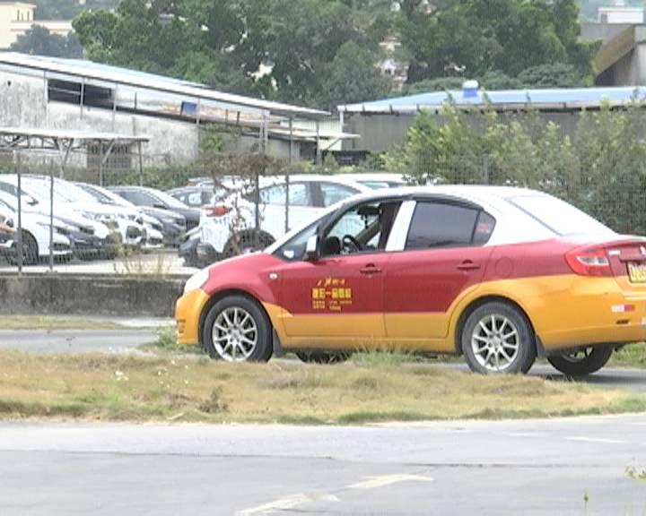 我市年輕人考駕照熱度未減 大三學生持駕照率超六成