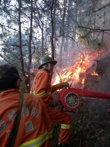 四川西昌村民焚烧杂草引发山火,被采取刑事强制措施