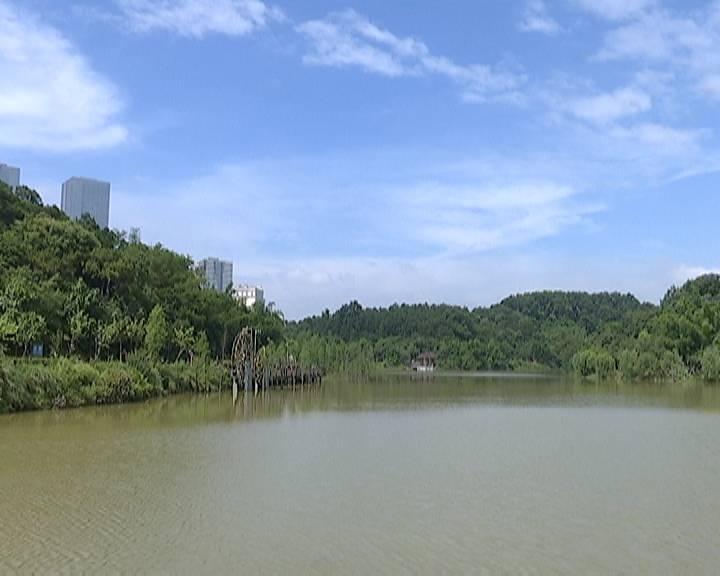 去年江门空气质量综合污染指数改善幅度居全省第2