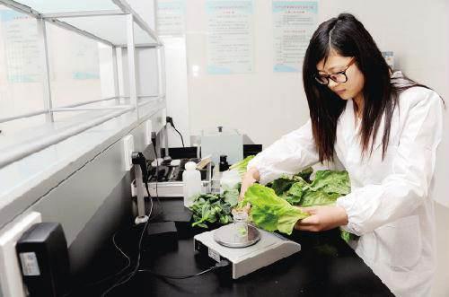 免费快检食物,深圳光明区6个街道已设快速检测室