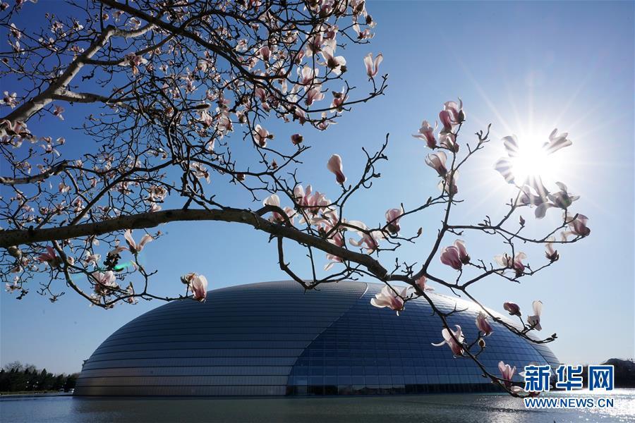 春暖花渐开