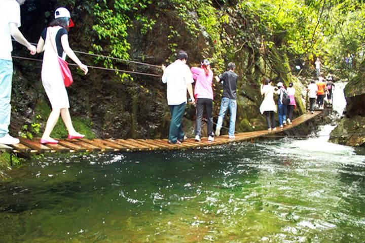 全省已有623处森林公园免费开放 广东森林面积10年增1200万亩