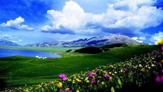 新疆史前保存最完整的石构建筑遗存现身伊犁河谷