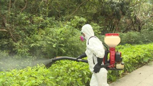 香港食环署引入新型捕蚊器 以真菌抑制蚊虫生长