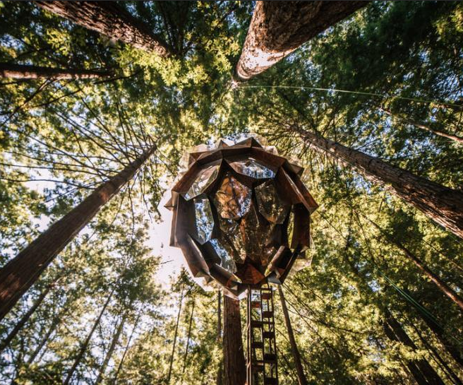 松果球树屋360度美景