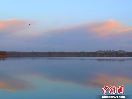 甘肃张掖湿地春日清晨水天一色如油画