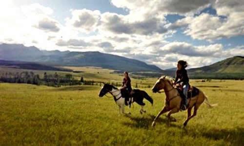 内蒙古将对骑马乘驼等高风险旅游项目进行重点安全监管