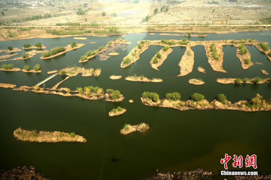 航拍苏皖交界黄河故道二坝湿地 春意盎然美如画卷