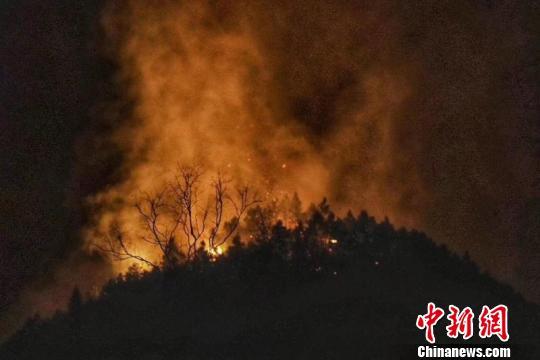 景德镇森林火灾 330余人参与扑救
