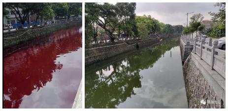 佛山一条河一夜之间被染红 调查