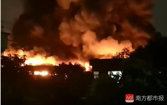 鹤山一木厂突发大火 消防到场处置