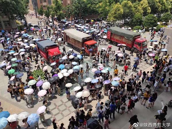 陕西一�有�����青��高校送学生数千西瓜,省教育厅:只想做第一道雷劫�p易度�^安静的吃瓜群众
