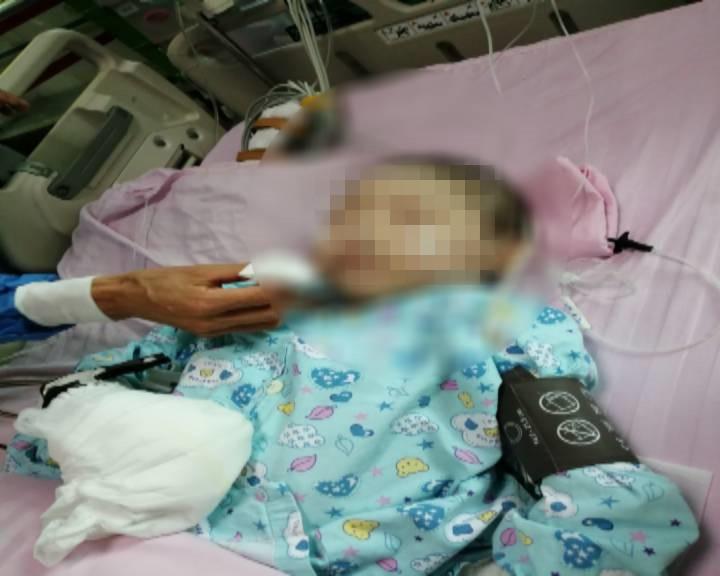 患重度地中海貧血女孩術后病情惡化 呼吁社會救助