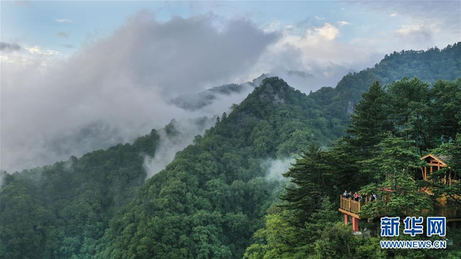 陕西略阳雨后初霁 森林公园美若仙境