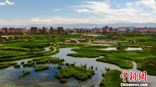 俯瞰千年古城甘肃张掖:草肥水美 绿意盎然