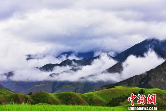 甘肃肃南草原似翡翠