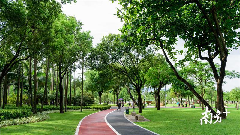 环境更美了!珠海海滨公园提升改造完工 全面向市民开放