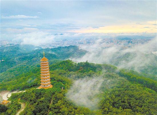 52项重点工程!江海区国家生态文明示范区创建规划出炉