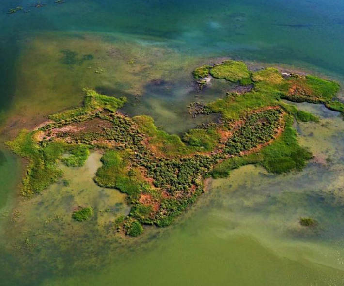 航拍甘肅黑河濕地天鵝湖