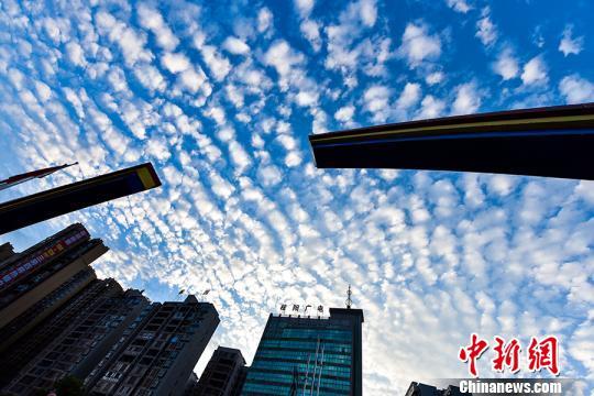 湖南桂陽現魚鱗云美景