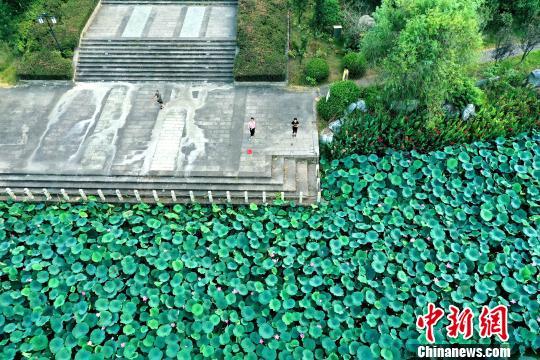江西新干青铜公园湖