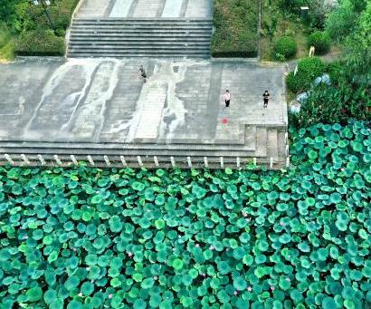 江西青銅公園湖水光瀲滟