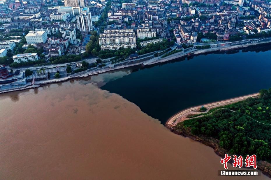 长江清江现壮观分界线