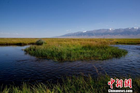 新疆巴里坤湿地秋色风光 美如画
