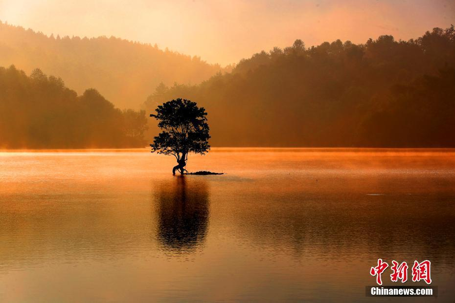 黄山奇墅湖雾气氤氲