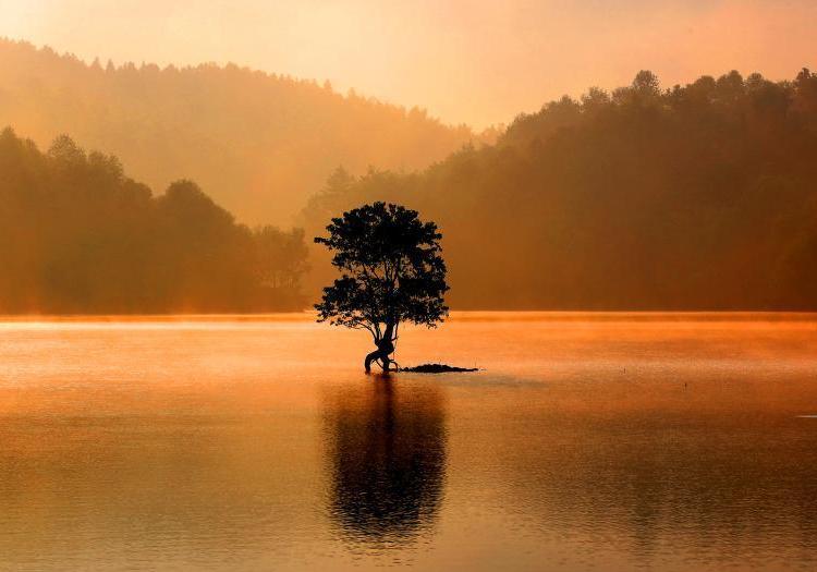 安徽黄山奇墅湖雾气氤氲