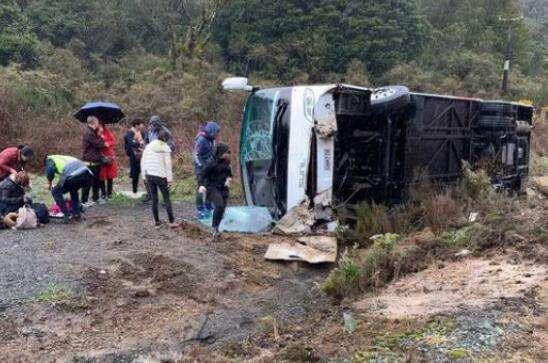 新西兰载中国游客大巴翻车致5死 司机遭5项指控