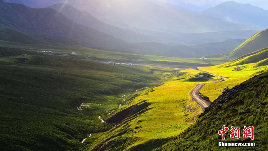 祁连山肃南段秋日黛山覆白雪 草原秀丽牛羊遍野