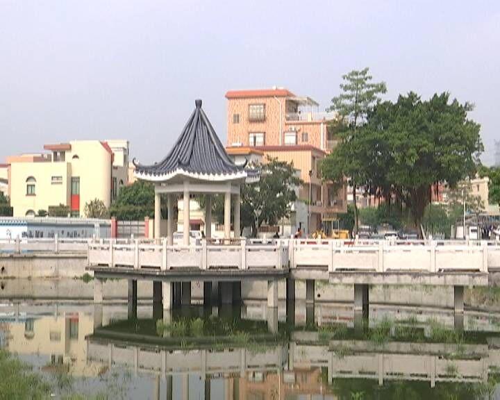 蓬江区杜阮镇长乔村党支部:大力发展村集体经济 打造美丽宜居乡村