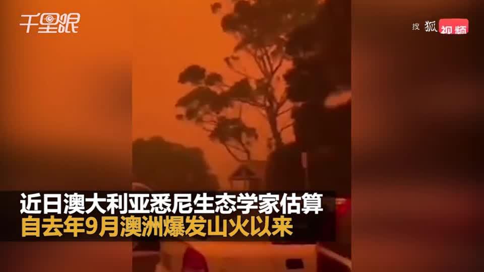 生态学专家:已有近5亿动物死于澳洲山火