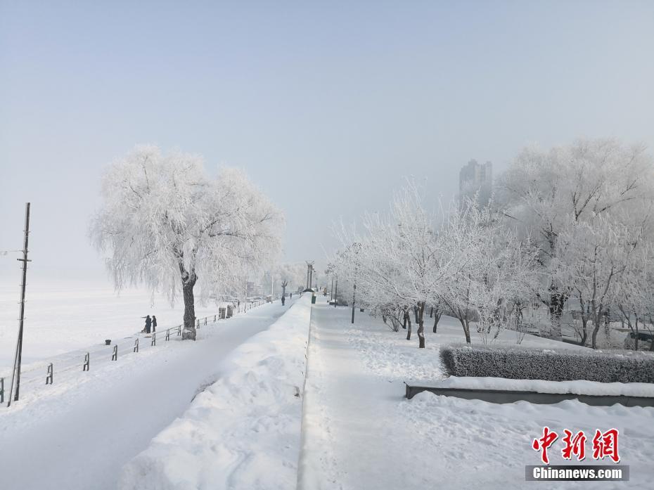 哈爾濱現霧凇美景