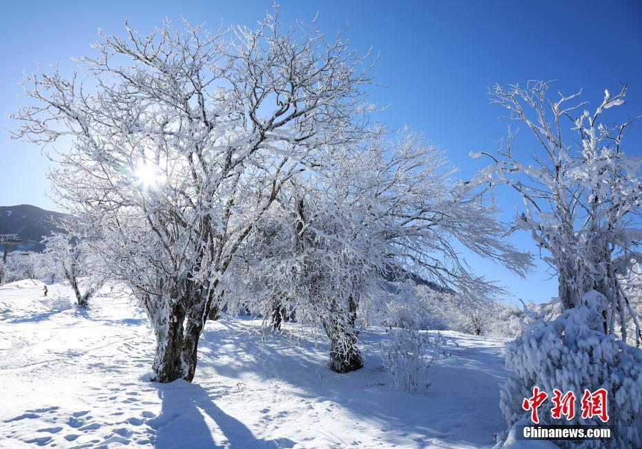 九鼎山雪后初晴如仙境