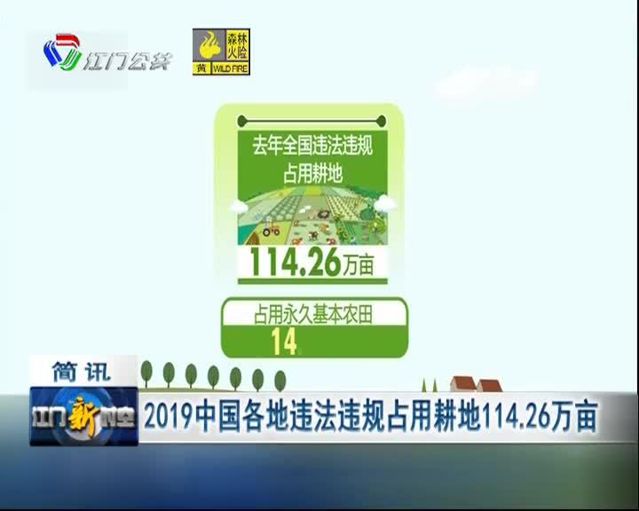 2019中国各地违法违规占用耕地114.26万亩