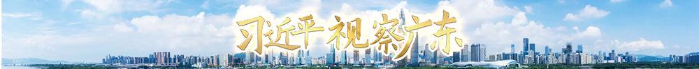 习近平视察广东