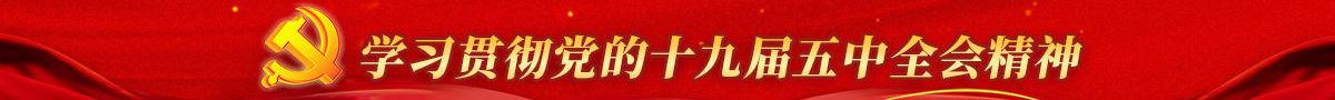 学习贯彻党的十九届五中全会精神