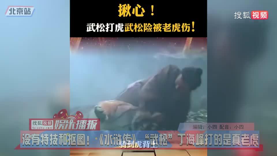 """沒有特技和摳圖!《水滸傳》""""武松""""丁海峰打的是真老虎"""