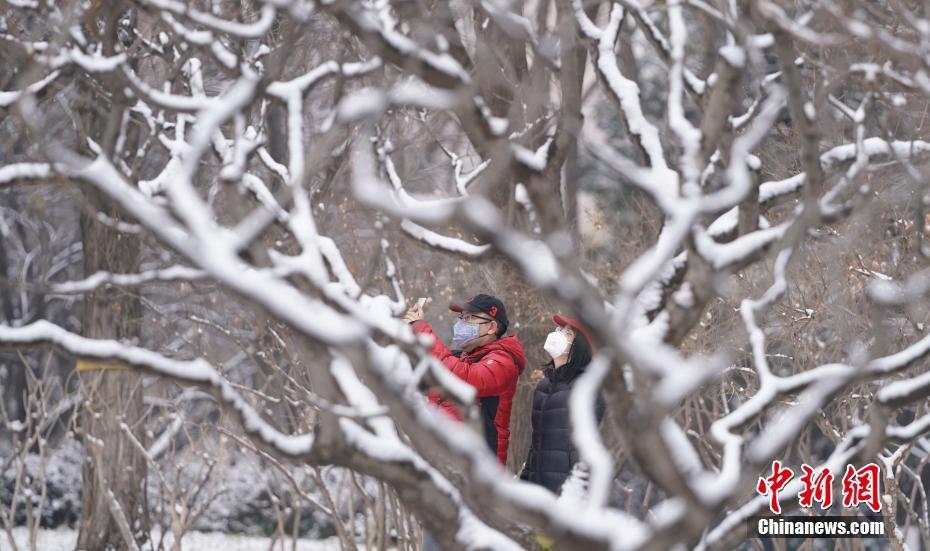 北京迎鼠年首場降雪