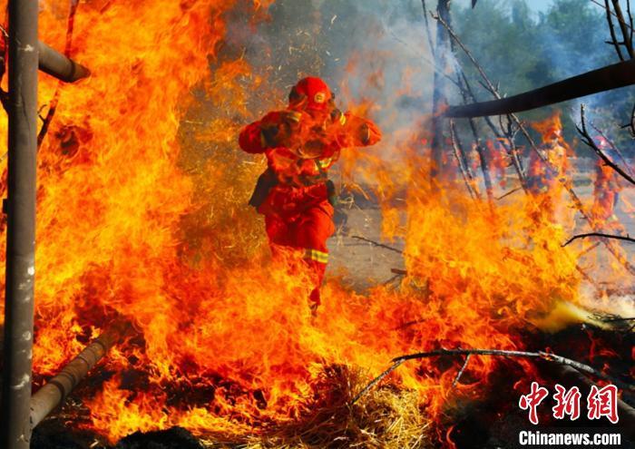 新疆森林消防春防